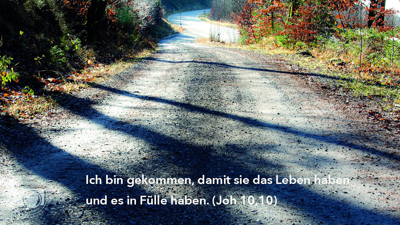 Ich bin gekommen, damit sie das Leben haben und es in Fülle haben (Joh 10,10)