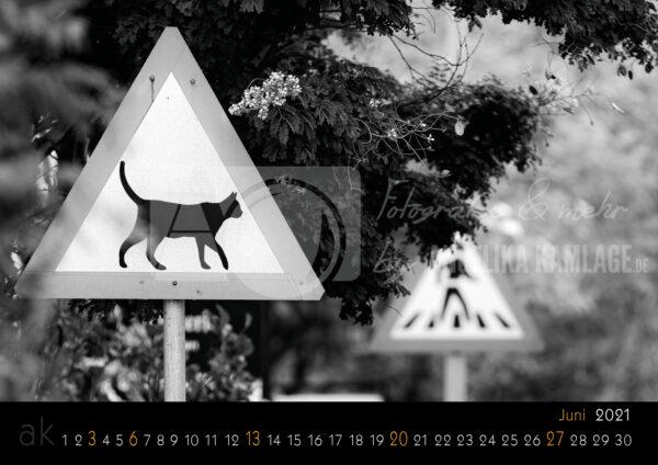 Tierpfade - Juni 2021